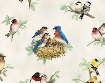 Beautiful Birds from Elizabeth's Studio Cotton Quilt Fabric 4310 Cream Nests- Free Shipping U.S.