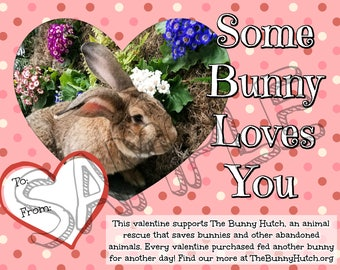 Bunny Valentine - Some Bunny Loves You (DIGITAL FILE) | Proceeds Suport Our Animal Shelter | Printable Bunny Valentine | Printable Valentine