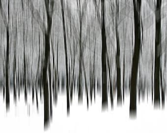 Black and white forest photo print - Surreal neutral home decor in 6x6 inches size