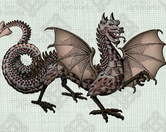 COLOR Digital Download Dragon, digi stamp, digis, Vintage illustration, Mythical Creature, Beast, Transparent png