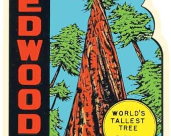Vintage Style Redwoods Northern California Travel Decal sticker