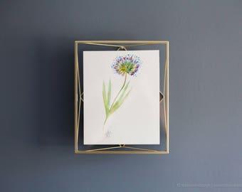 The Wonder Flower, Original Watercolor Painting - Metallic gold frame, statement gift, Art Gift, Bridal Shower, New Home