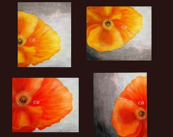 POPPIES- Abstract Landscape/ Floral Art Prints-  Free Shipping inside US