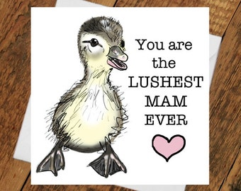 Mum Mam Mother Birthday I Love holiday Card Day lush Geordie Funny Humour Duck Greetings Gift Love Mummy Card Cute