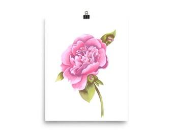 Peony flower print wall art