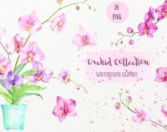 Watercolor clipart Orchid Collection,  pink orchid, purple orchid, moss orchid, printable instant download