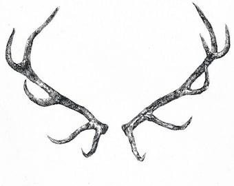 Deer horns - Temporary tattoo