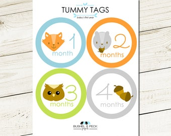 Woodland Tummy Tags - #Baby #Month #Tags #milestone #photoprop