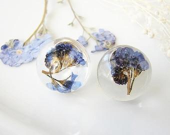 Resin Earrings Forget Me Not Earrings Resin Jewelry Real Flower Earrings Stud Earrings Something Blue Pressed Flower Earrings