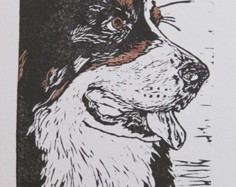 """Bernese Mountain Dog hand-colored block print, limited edition - """"Dewey"""" hand-pulled print, dog art"""