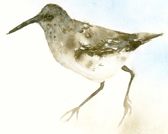 Sandpiper Original Watercolor Painting