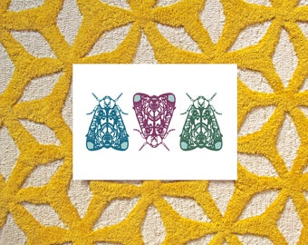 The Mothketeers | A4 Giclee Print | Moths