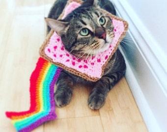 Nyan Cat Costume