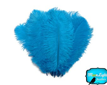 "Ostrich Feathers, 1/2 lb - 14-17"" Turquoise Ostrich Large Drab Wholesale Feathers (bulk) : 2077-D"