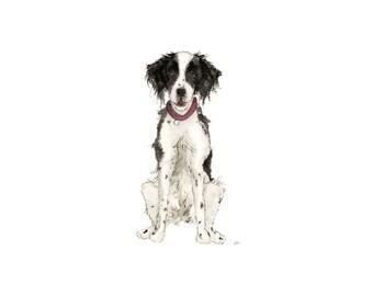 Portrait de Illustration chien
