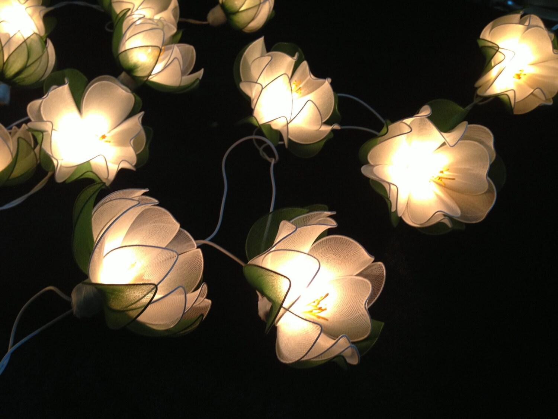 White lotus with leaf string lights for patioweddingparty zoom mightylinksfo