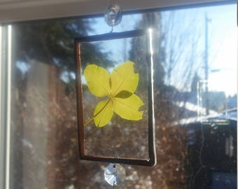 OAK Vintage Glass Crystals Sun Catcher/Rainbow maker with a Four Leaf Clover
