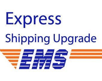 EMS Expedited shipping