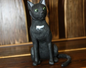 Funny black cat (black kitten)