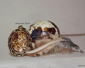 Quail Eggshell Necklace #103