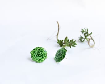 Succulent studs , succulent earrings , succies lover gift , plant lover gift , succulent jewelry , succulent gift idea , gift for her