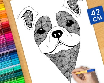 COLORING Poster - DOG - 16.5 inch