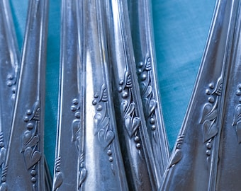 55 Pieces Rogers Oneida Meadowbrook Stainless Flatware, Vintage Silverplate, Wm A Rogers Meadowbrook Heather Pattern, Service for 7 Plus