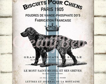 French Vintage Rustic Dog Image Large Instant Digital Download Printable Graphic Transfer 0831