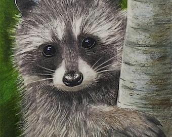 Raccoon Wildlife Art Melody Lea Lamb ACEO Print #279