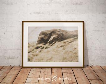 elephant safari nursery room decor baby nursery animal wall art safari african decor - African Decor