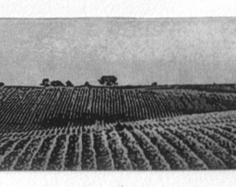 Western Horizon, signed, fine art etching