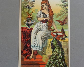 "Original Vintage 1800's ""Pigeon"" Plug Tobacco Caddy Lithograph Label"