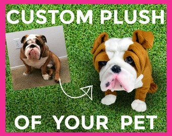CUTE PLUSH of PET - stuffed animal of pet, pet photo to stuffed animal, plush of pet, pet plush, plush pet