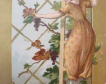 Charming Victorian Scrap with Pretty Lady Picking Grapes From Trellis