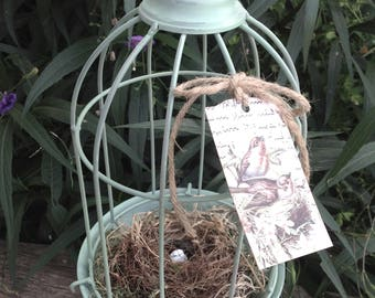 Bird Cage Cloche on a Pedestal w/Authentic Texas Bird Nest - Bird Lover - Nature - Cottage Chic
