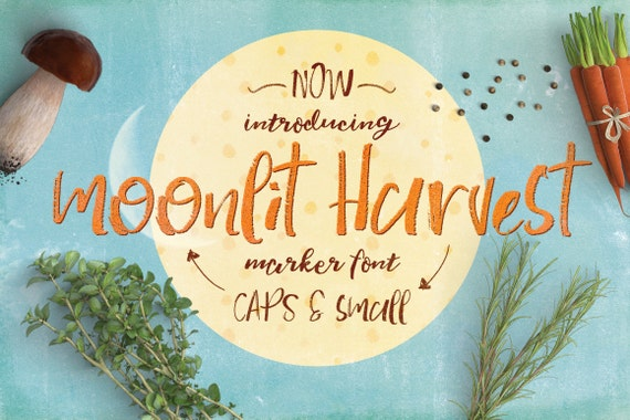 Digital Font Moonlit Harvest - Digital Typeface - Hand drawn marker font - Instant Download -