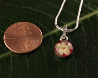 Sterling Silver Miniature Pressed Elder Wild Flower Round Pink Mini Pendant
