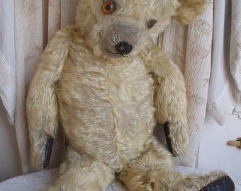 "Large 27"" antique mohair teddy bear seeks retirement home"