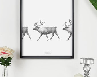 Moving Reindeer Original Sketch Print