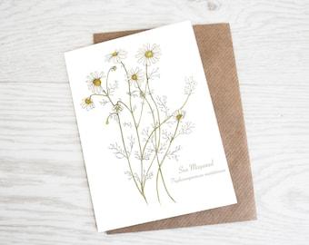 Sea Mayweed, A6 Botanical Wildflower Greeting Card
