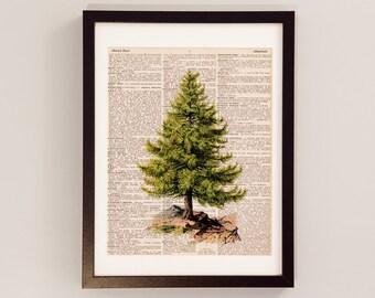 Vintage Christmas Tree Art Print - Christmas Decor - Print on Vintage Dictionary Paper - Pine Tree - Christmas Art