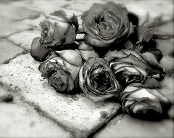 "Black and White Art, Rose Print, Rose Art, Flower Garden Print, Nature, Cottage Chic Art, Rustic Romantic Botanical Art- ""Along The Way"""