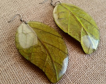 Real Green Mango Leaves Coconut Back Big Statement Earrings Eco Friendly, Manga Mango Earrings
