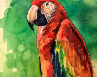 Watercolor of a Macaw