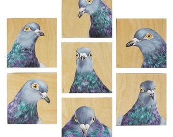 Custom Pigeon painting - urban wildlife - street pigeon art - city bird - columba livia - natural woodgrain - wood grain painting- bare wood