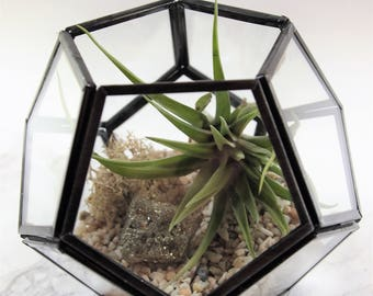 Geometric glass Air plant terrarium kit with Pyrite Fools Crystal healing stone;unique gift; tillandsia;terrarium;office decor