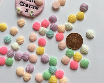 Pack of 10 mixed colour sweet mini shell embellishments