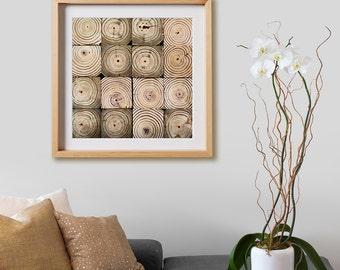 Rings of Life Print.  Wood, circles, orange, yellow, 4x4, decor, wall art, artwork, large format photo.