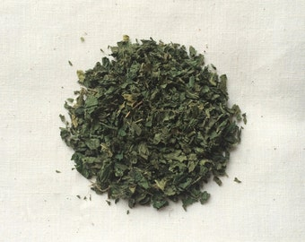 Stinging Nettle (Urtica dioica) - Organic