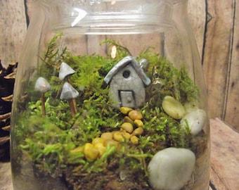The Perfect Size - Live Moss Terrarium - Fairy Garden with Clay House - Terrarium - Miniature Lantern - Handmade By Gypsy Raku